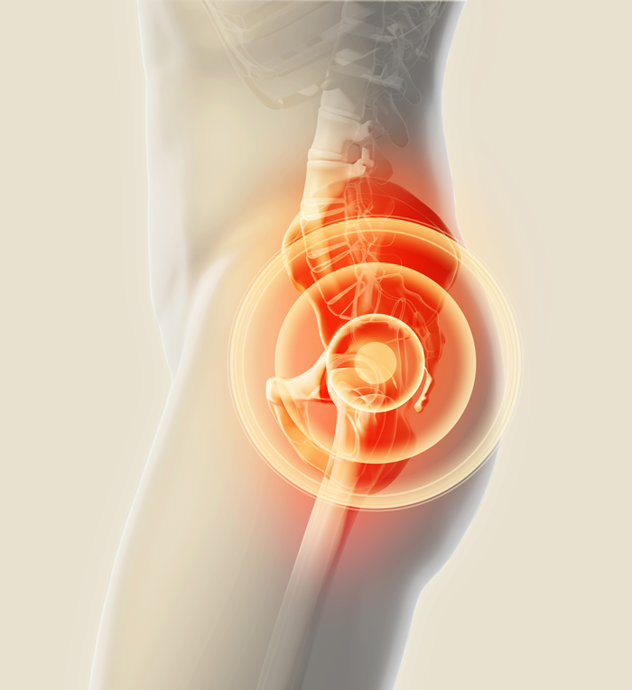 Pelvic Floor Dysfunctions Instep Physical Therapy Edmonton